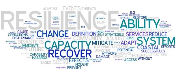 resilience development
