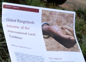 Global Rangelands Initiative: Key to improving livestock-based livelihoods
