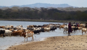 Updates from the Sustainable Rangelands Management project in Tanzania