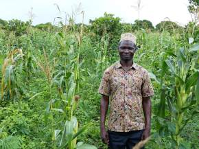 Positive deviance: Uncovering superior farming practices in Tanzania